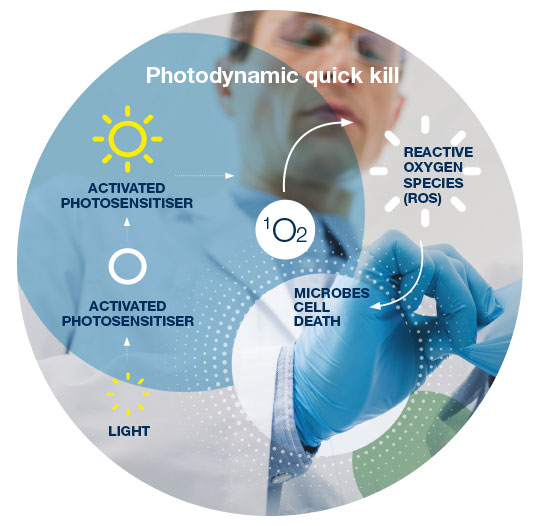 Photodynamic Quick Kill: The active ingredient on the glove is a photosensitize